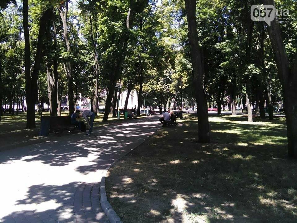 Жара в Харькове: как избежать теплового удара, - ФОТО, фото-2