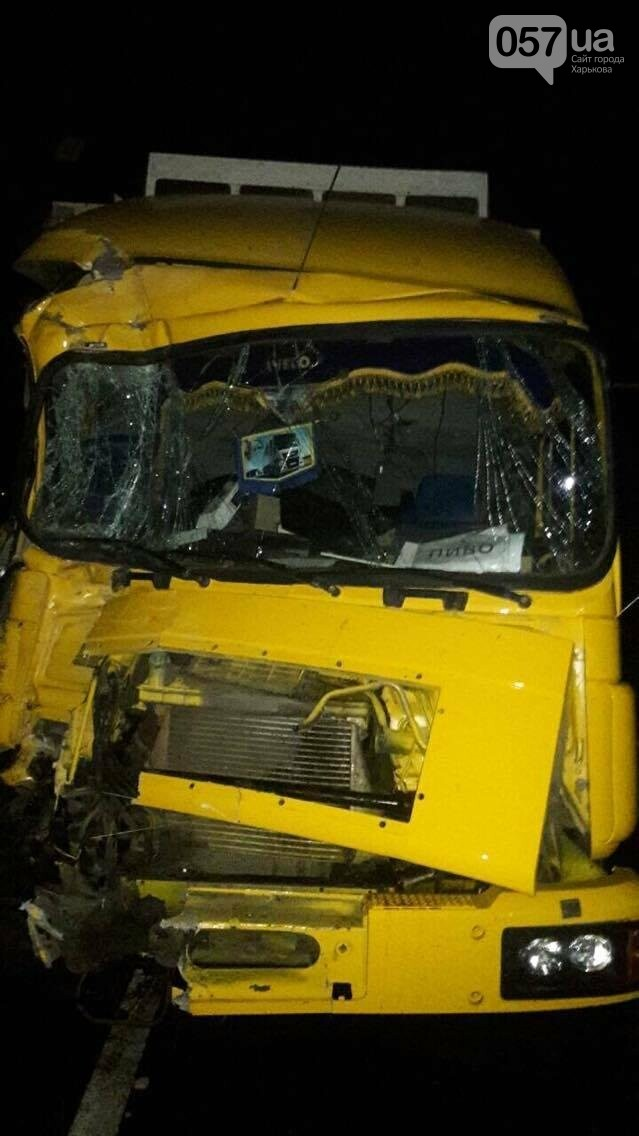 ДТП на мосту в Изюме: у большинства пострадавших - незначительные травмы (ФОТОФАКТ) , фото-6
