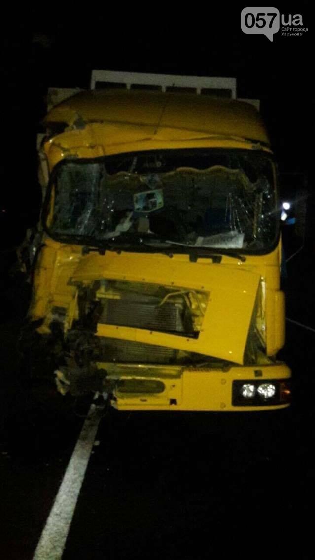 ДТП на мосту в Изюме: у большинства пострадавших - незначительные травмы (ФОТОФАКТ) , фото-2
