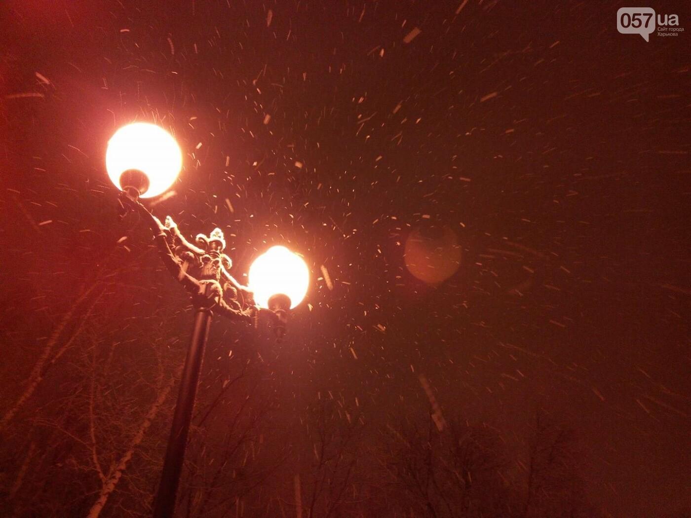 Синоптики прогнозируют в Харькове мокрый снег и гололед (ФОТО) , фото-3