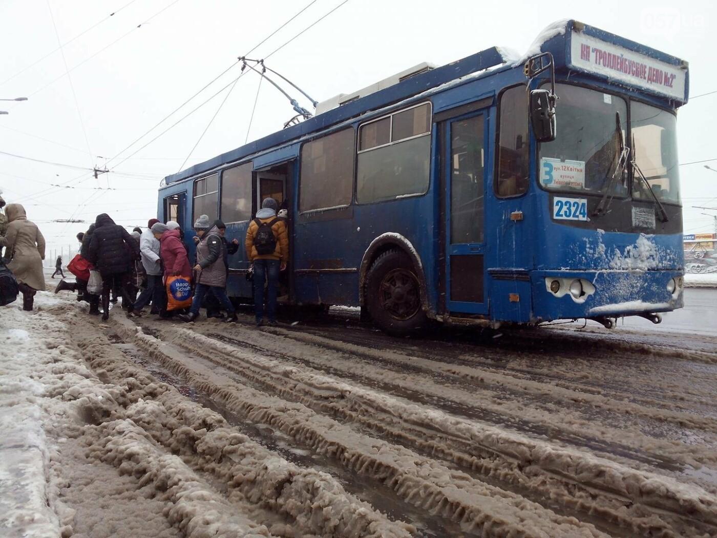 Синоптики прогнозируют в Харькове мокрый снег и гололед (ФОТО) , фото-5