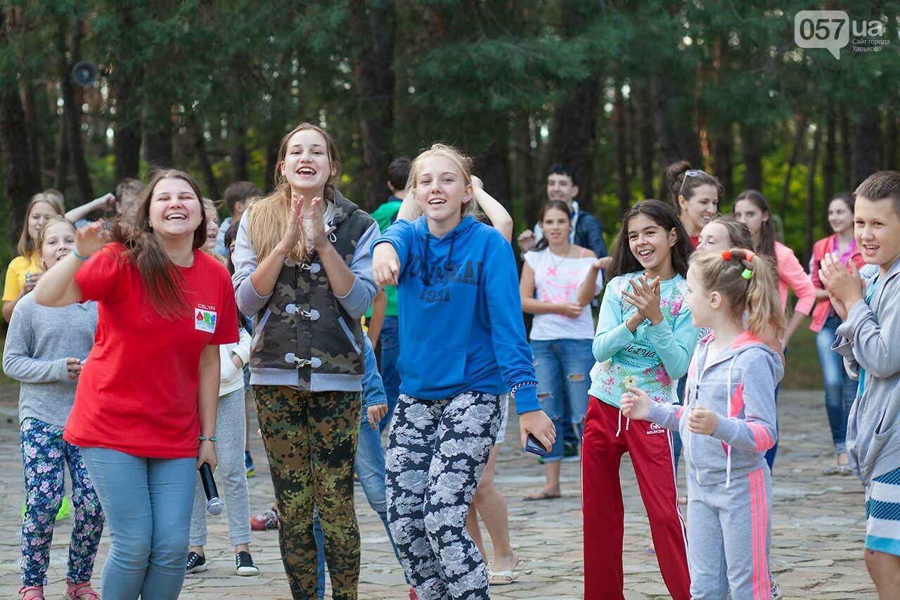 Куда отправить ребенка на лето: обзор лучших лагерей Украины , фото-2