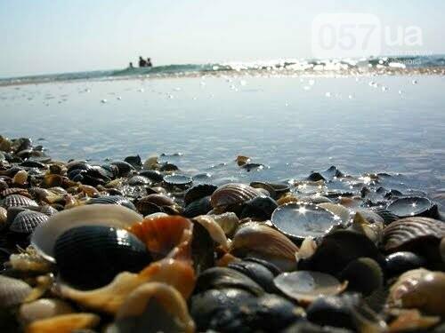 Где отдохнуть на море этим летом: обзор жилья и цен на украинских курортах , фото-117