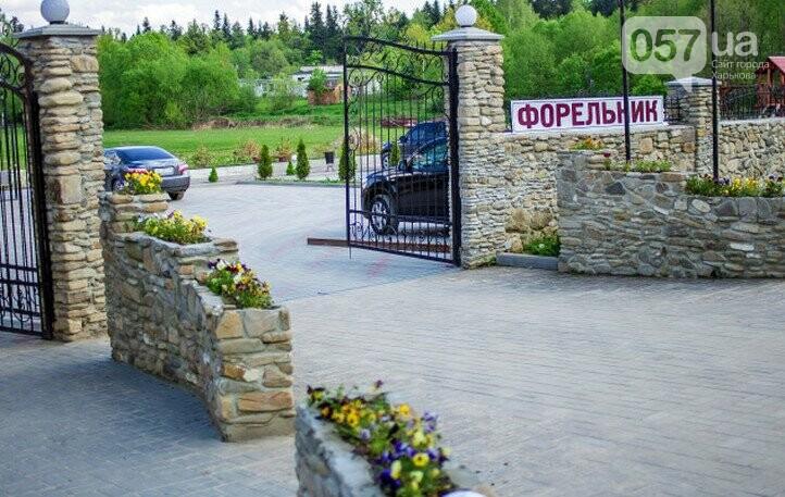 Едем в Карпаты: какие замки, горы, водопады посетить и кто поможет организовать ваш отдых , фото-60