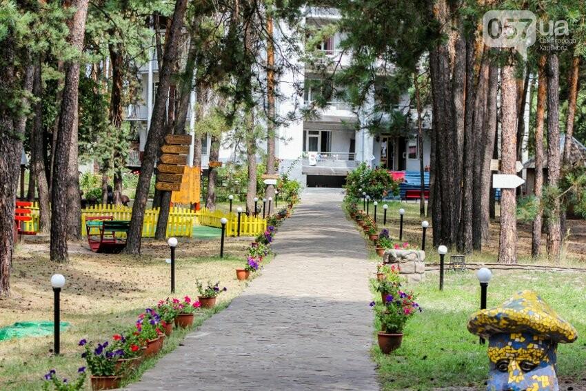 Куда отправить ребенка на лето: обзор лучших лагерей Украины , фото-24