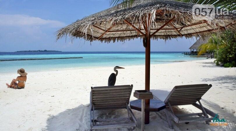 Отпуск за границей: какие в 2018 году цены на путевки, и куда можно поехать с детьми? , фото-16