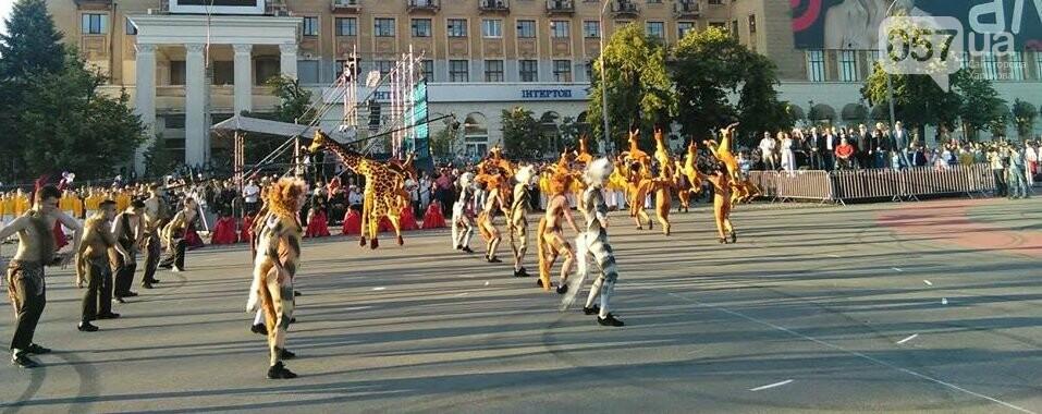 Танцующие жирафы и музыкальные хиты: на площади Свободы прошел масштабный флешмоб, - ФОТО, фото-4