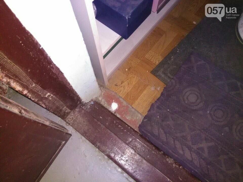 Начало заливать подвал кипятком, а потом появились блохи. Жителей дома в Харькове атаковали насекомые, - ФОТО, фото-4