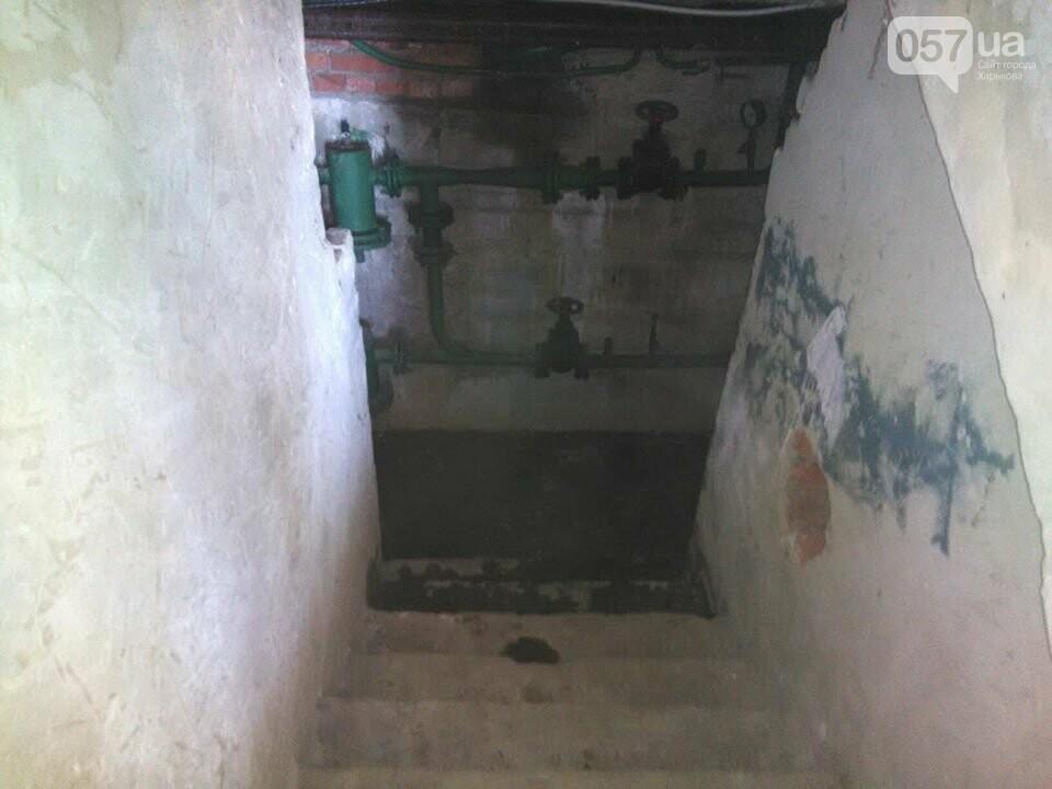 Начало заливать подвал кипятком, а потом появились блохи. Жителей дома в Харькове атаковали насекомые, - ФОТО, фото-5