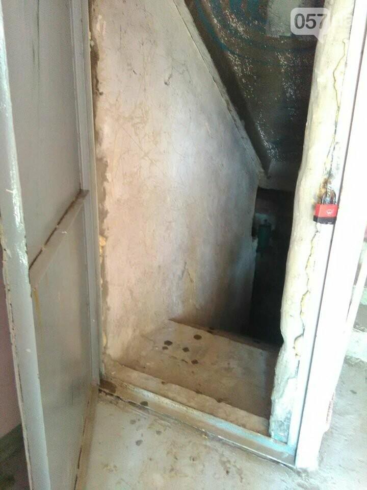 Начало заливать подвал кипятком, а потом появились блохи. Жителей дома в Харькове атаковали насекомые, - ФОТО, фото-1