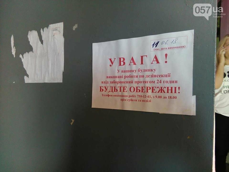 Начало заливать подвал кипятком, а потом появились блохи. Жителей дома в Харькове атаковали насекомые, - ФОТО, фото-7