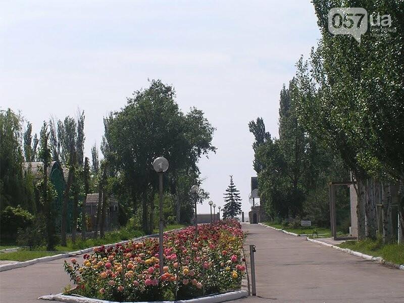 Где отдохнуть на море этим летом: обзор жилья и цен на украинских курортах , фото-195