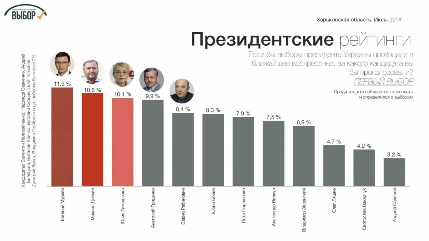Партии консервативного фланга набирают на Харьковщине более 50%, - социологи , фото-4