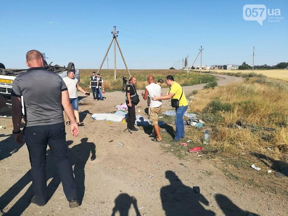 На трассе Харьков-Запорожье жуткая авария: 6 жертв, среди них есть дети, - ФОТО, фото-3