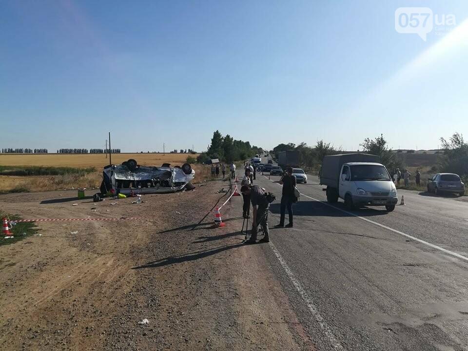 На трассе Харьков-Запорожье жуткая авария: 6 жертв, среди них есть дети, - ФОТО, фото-4