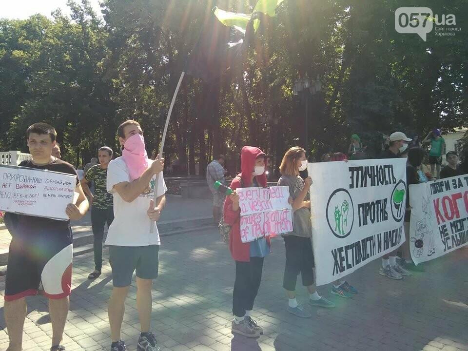 В Харькове прошел зоозащитный марш, - ФОТО, фото-9