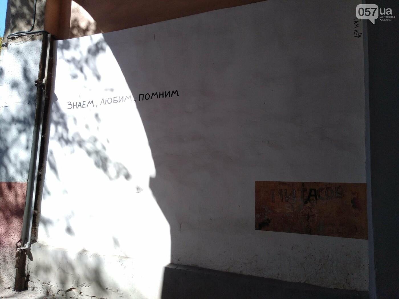 Стрит-арт Гамлета в Харькове: ТОП-10 граффити художника, - ФОТО, фото-10
