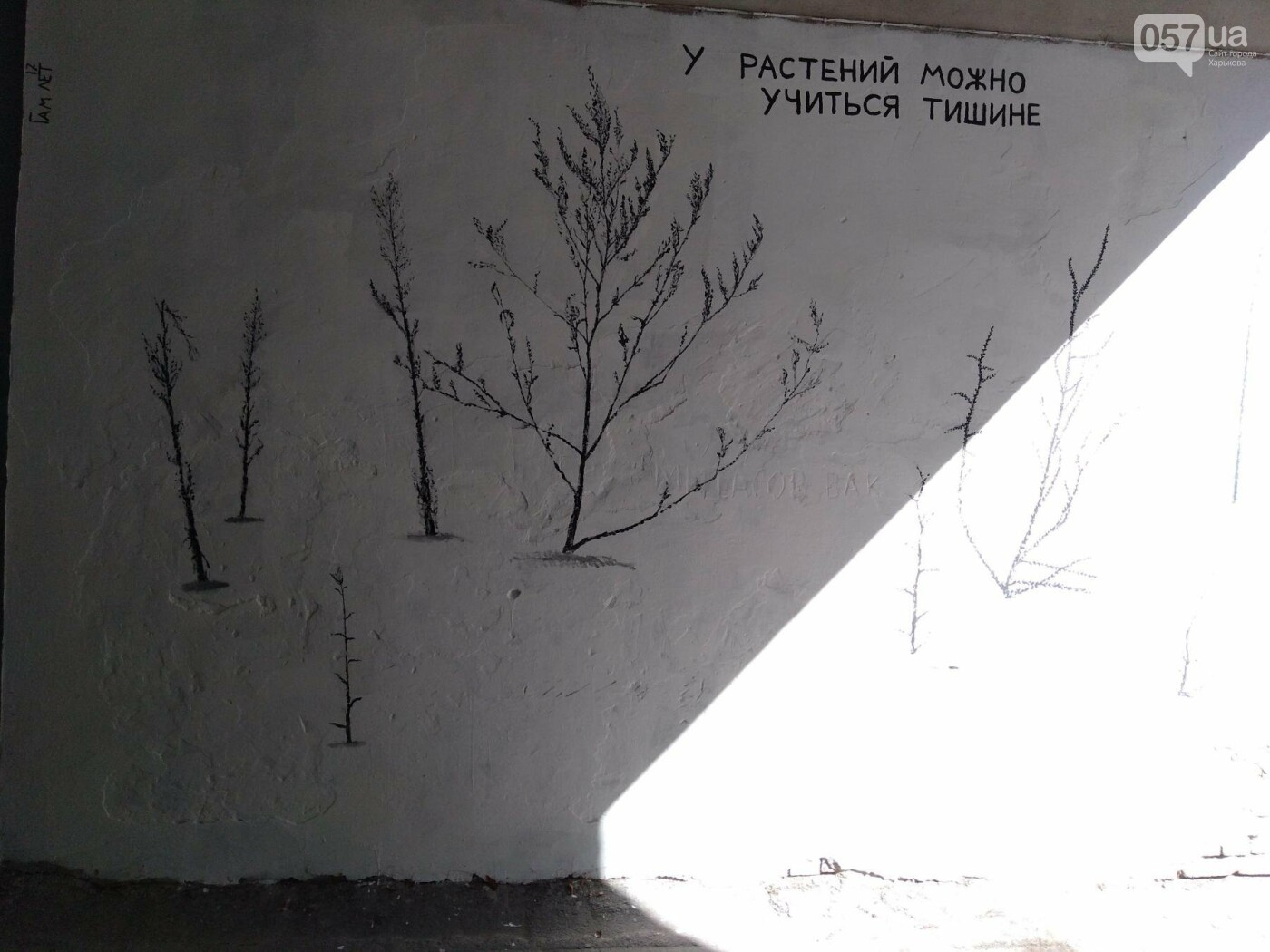 Стрит-арт Гамлета в Харькове: ТОП-10 граффити художника, - ФОТО, фото-20