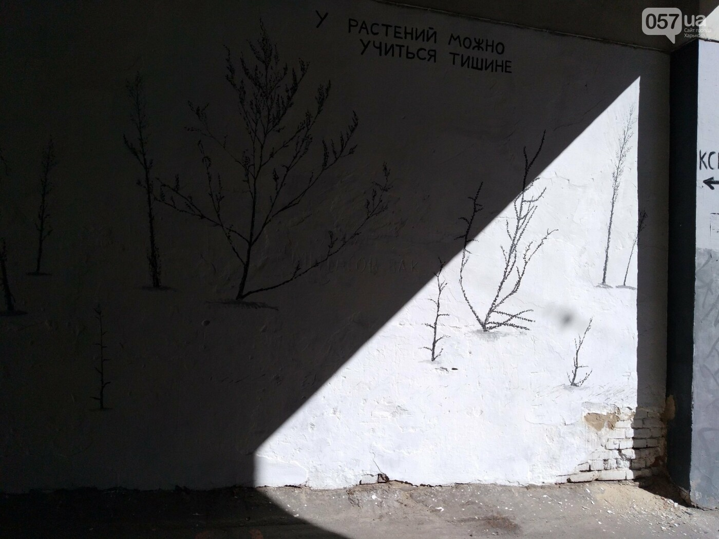 Стрит-арт Гамлета в Харькове: ТОП-10 граффити художника, - ФОТО, фото-21