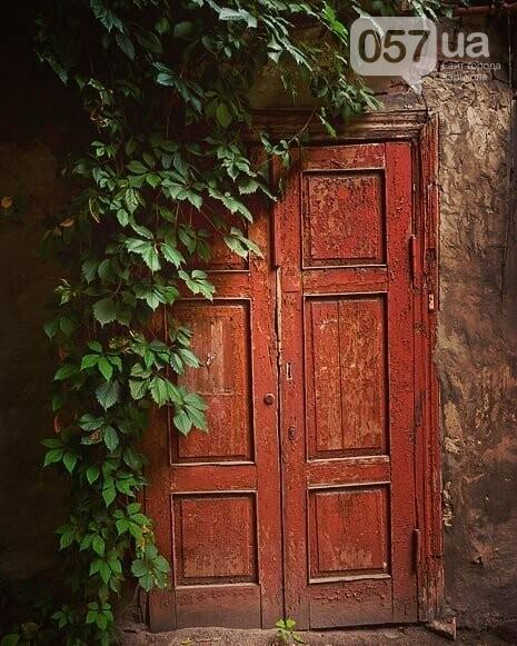 Двери неизвестного Харькова: эстетика городских дебрей, - ФОТО, фото-6