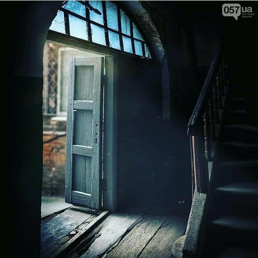Двери неизвестного Харькова: эстетика городских дебрей, - ФОТО, фото-9