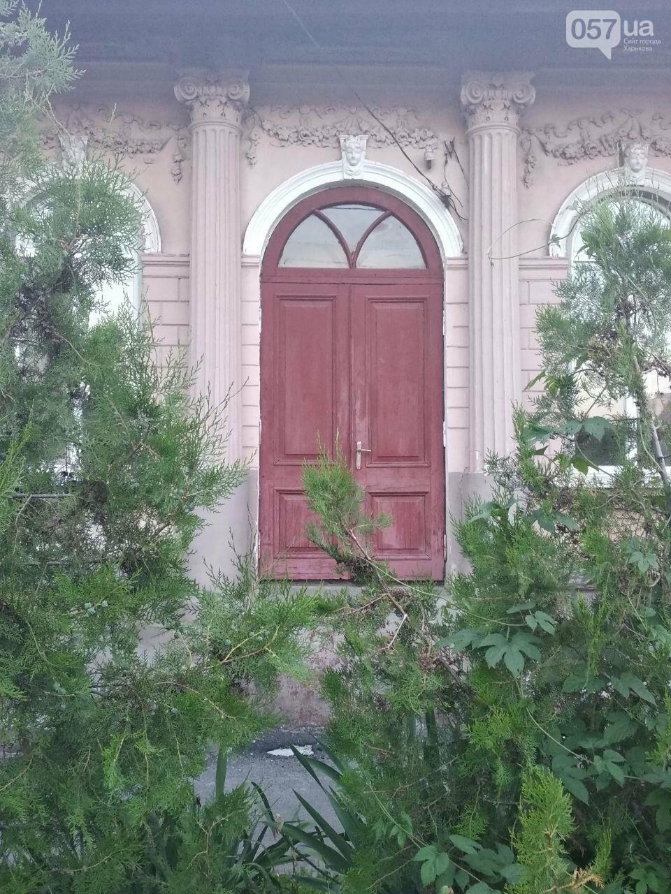 Двери неизвестного Харькова: эстетика городских дебрей, - ФОТО, фото-20