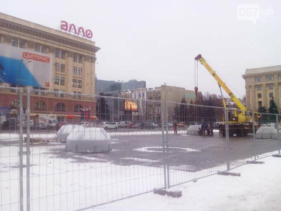 На площади Свободы установили новогоднюю елку, - ФОТО, фото-6