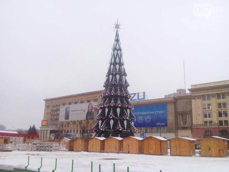 На площади Свободы установили новогоднюю елку, - ФОТО, фото-4