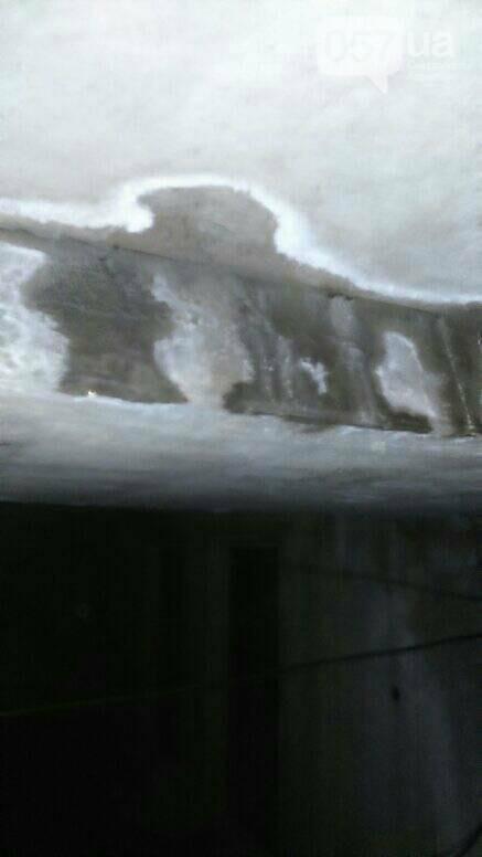 Отваливающиеся обои и плесень на стенах: на ХТЗ жители дома страдают из-за протекающей крыши, - ФОТО, фото-11
