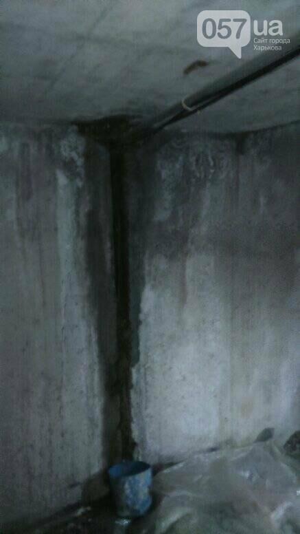 Отваливающиеся обои и плесень на стенах: на ХТЗ жители дома страдают из-за протекающей крыши, - ФОТО, фото-12