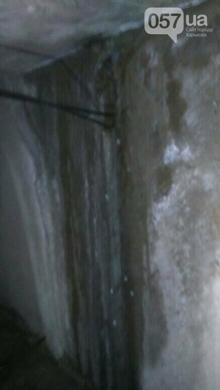 Отваливающиеся обои и плесень на стенах: на ХТЗ жители дома страдают из-за протекающей крыши, - ФОТО, фото-13
