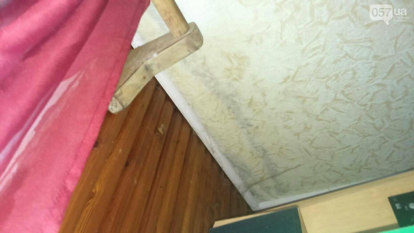 Отваливающиеся обои и плесень на стенах: на ХТЗ жители дома страдают из-за протекающей крыши, - ФОТО, фото-2