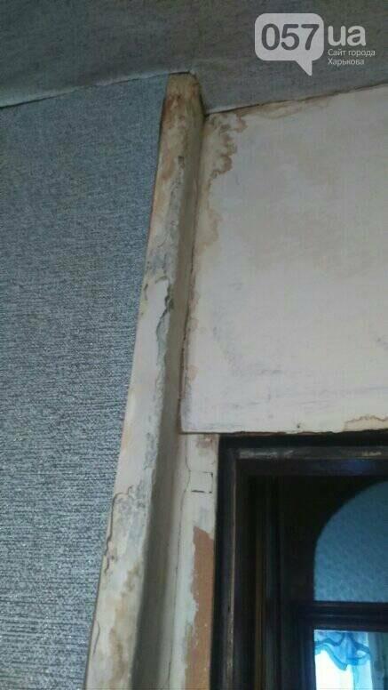 Отваливающиеся обои и плесень на стенах: на ХТЗ жители дома страдают из-за протекающей крыши, - ФОТО, фото-7