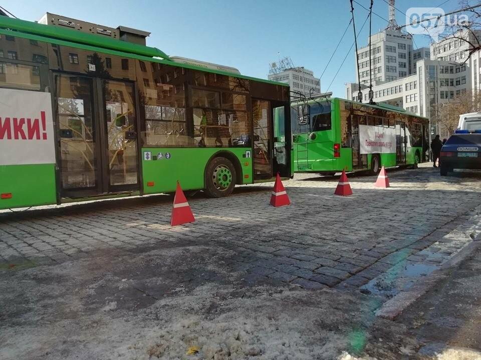 «Транспорт без политики». В Харькове проходит пикет в поддержку подорожания проезда, - ФОТО, фото-11