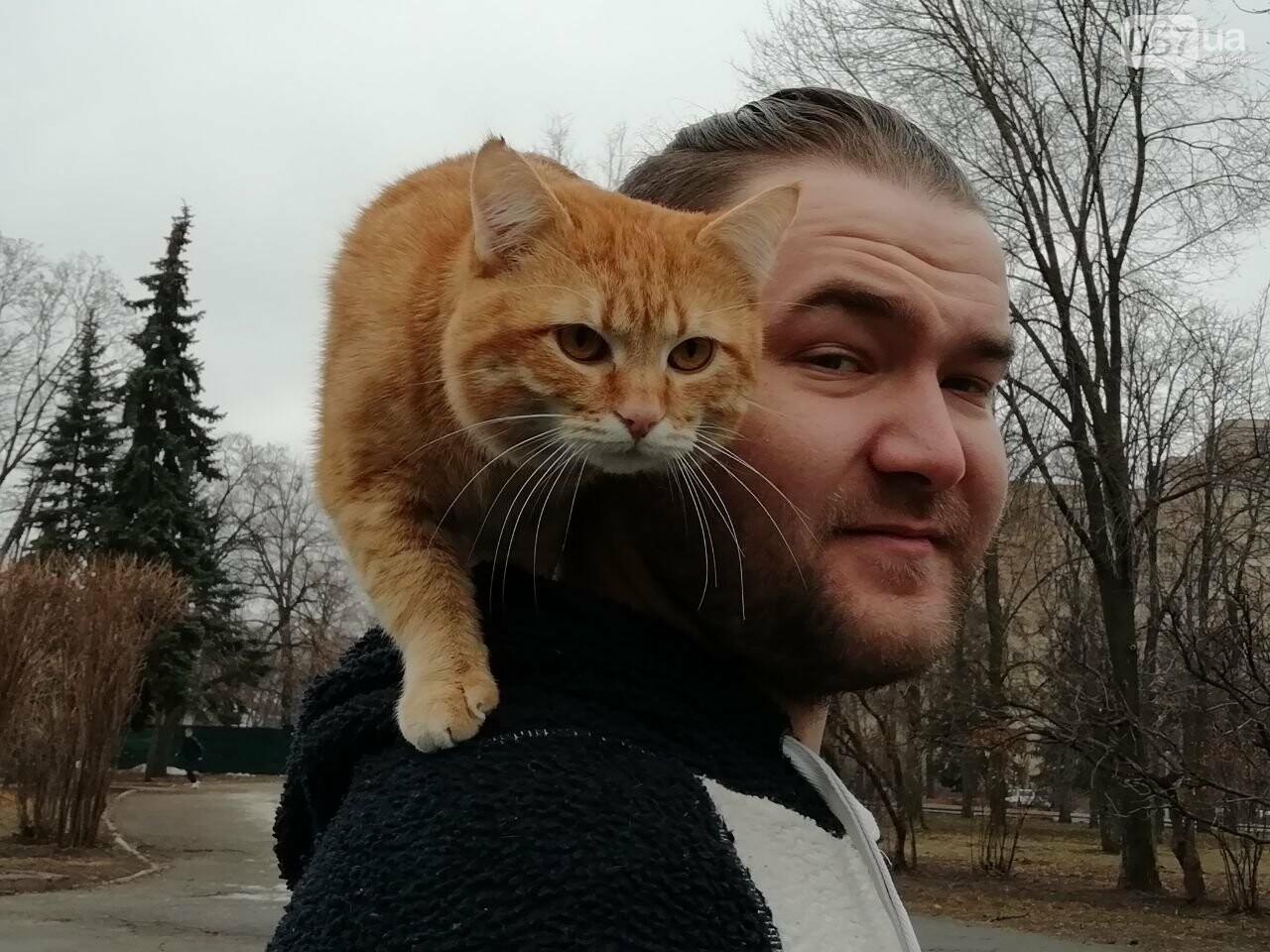 Поездка с котом и большие чаевые. Как харьковский таксист с питомцем возит пассажиров, - ФОТО, фото-3