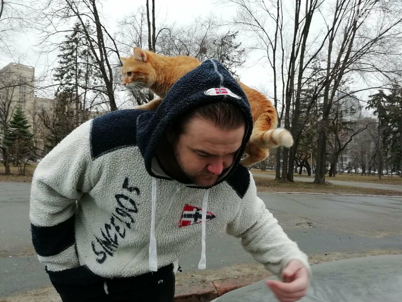 Поездка с котом и большие чаевые. Как харьковский таксист с питомцем возит пассажиров, - ФОТО, фото-6