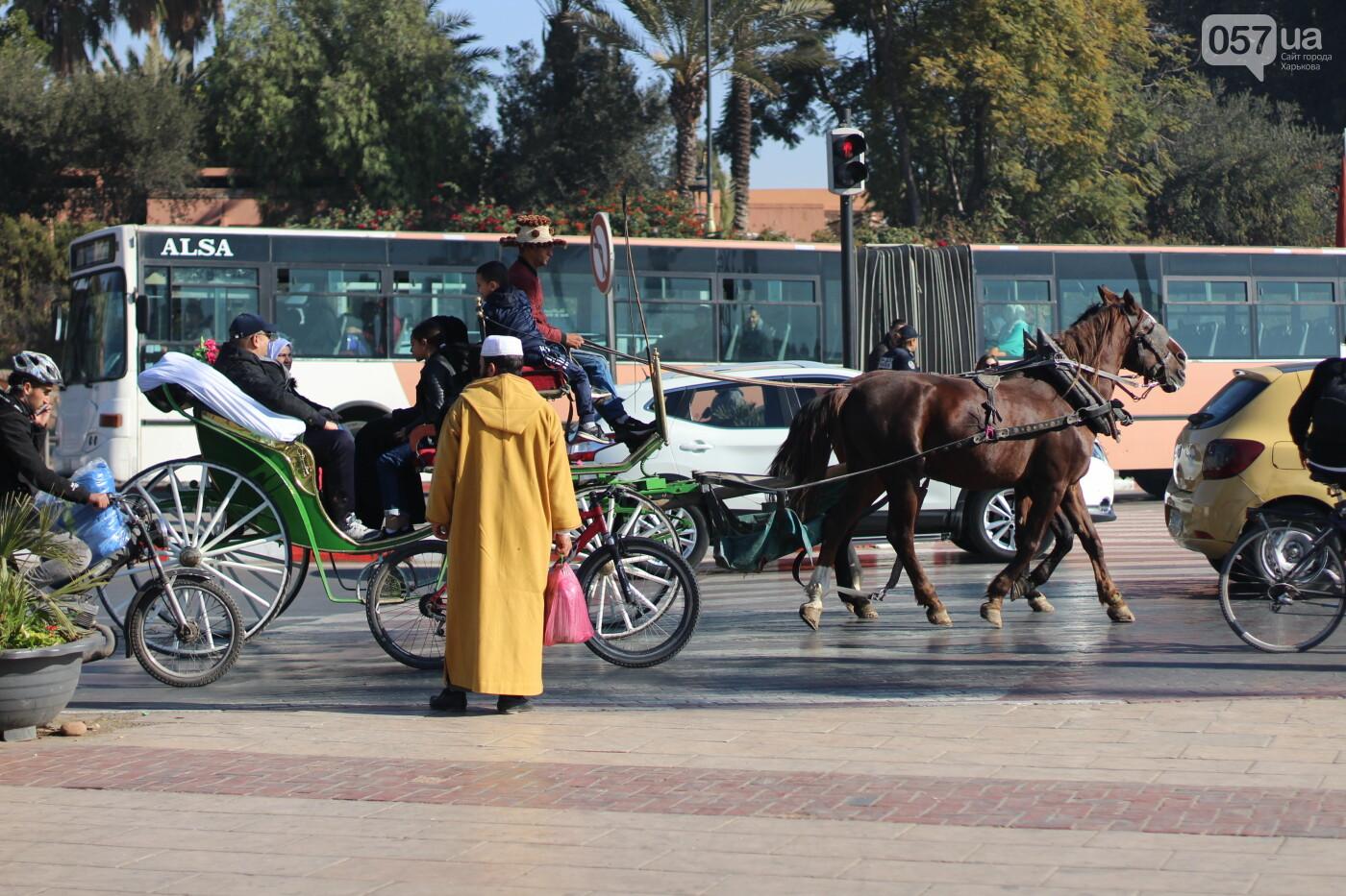 Из Харькова в Африку. Как добраться, на что посмотреть и что попробовать в Королевстве Марокко, - ФОТО, фото-5