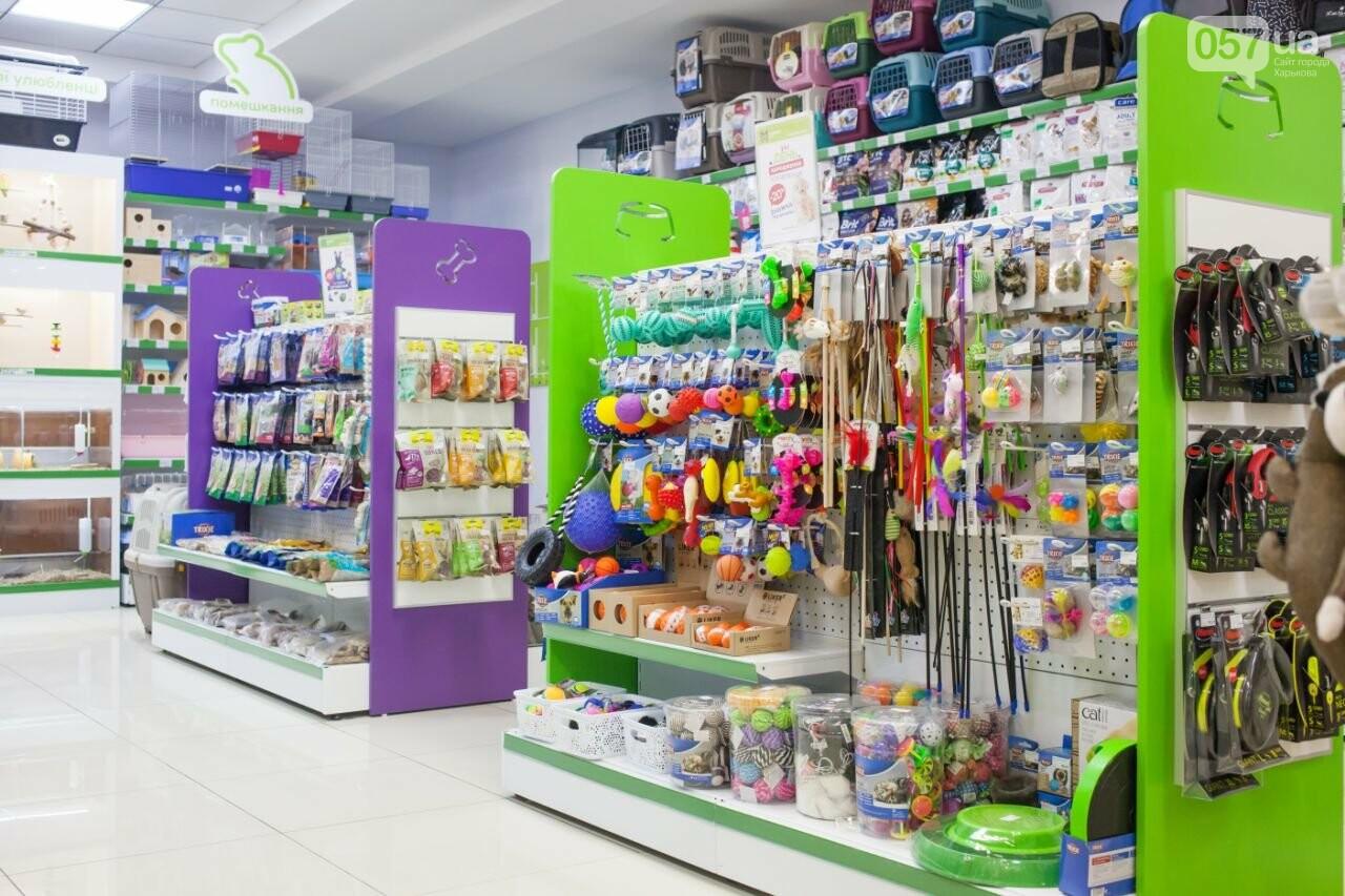 Новый зоомагазин в Харькове, в который обязательно стоит заглянуть, фото-5