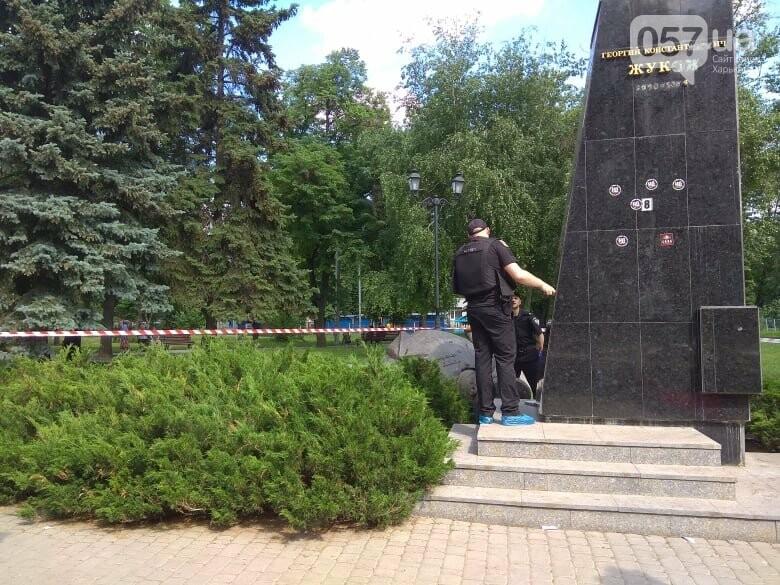 В Харькове снесли бюст маршала Жукова, - ФОТО, фото-4