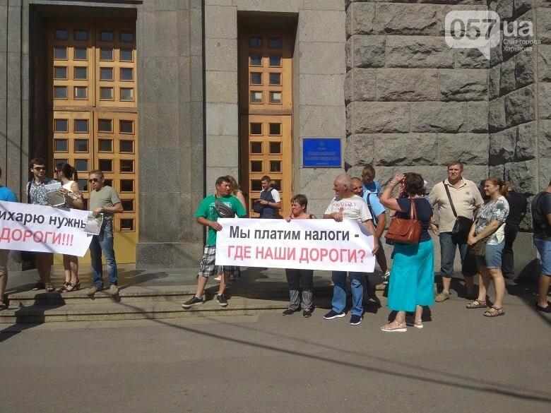 Возле мэрии проходит пикет против переименования проспекта Григоренко, - ФОТО, фото-9