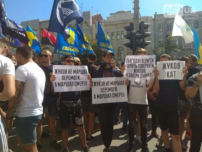 Возле мэрии проходит пикет против переименования проспекта Григоренко, - ФОТО, фото-6