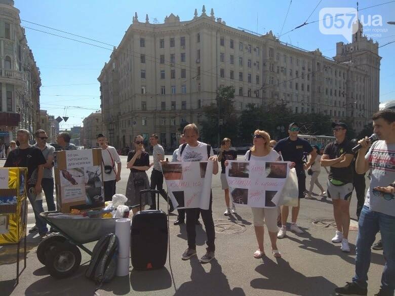 Возле мэрии проходит пикет против переименования проспекта Григоренко, - ФОТО, фото-12