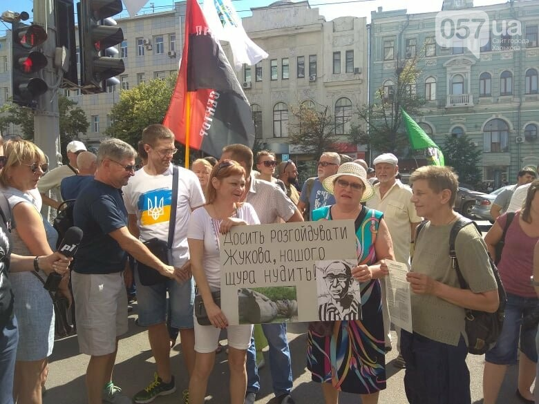 Возле мэрии проходит пикет против переименования проспекта Григоренко, - ФОТО, фото-8