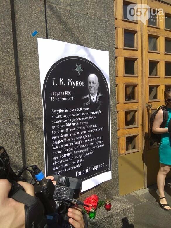 Возле мэрии проходит пикет против переименования проспекта Григоренко, - ФОТО, фото-10