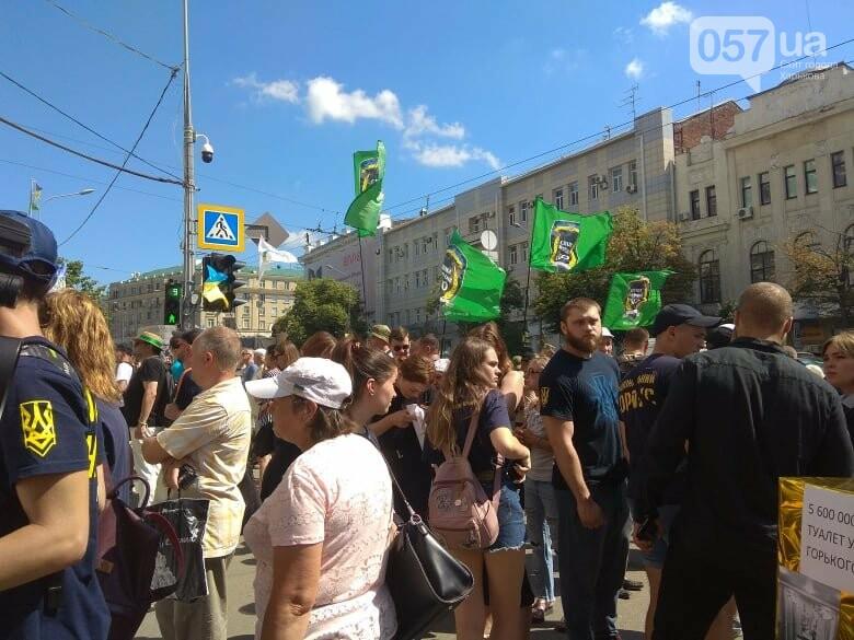 Возле мэрии проходит пикет против переименования проспекта Григоренко, - ФОТО, фото-2