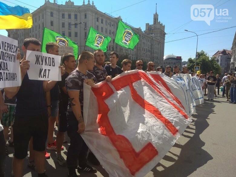 Возле мэрии проходит пикет против переименования проспекта Григоренко, - ФОТО, фото-5