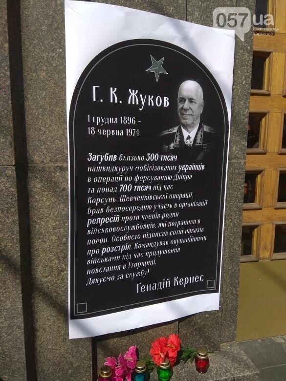 Возле мэрии проходит пикет против переименования проспекта Григоренко, - ФОТО, фото-11