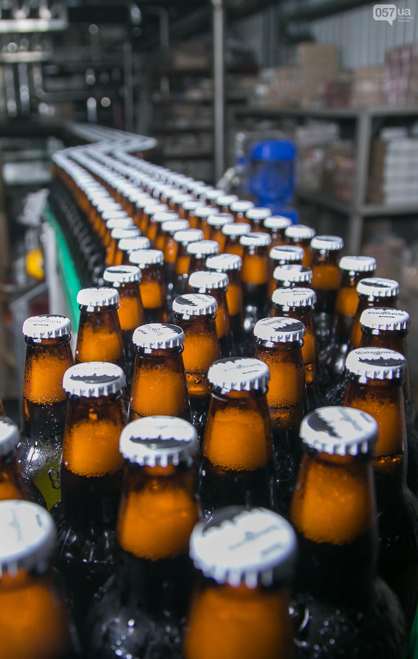 Уманских пивоваров назвали лучшими производителями пива в Украине, фото-3