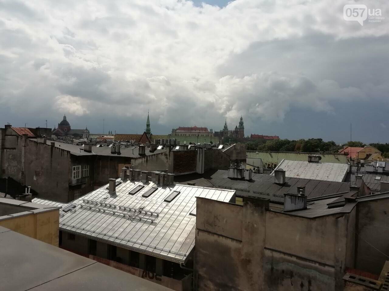 Из Харькова в Краков: Королевский замок, средневековые здания и музей под землей, - ФОТО, фото-9