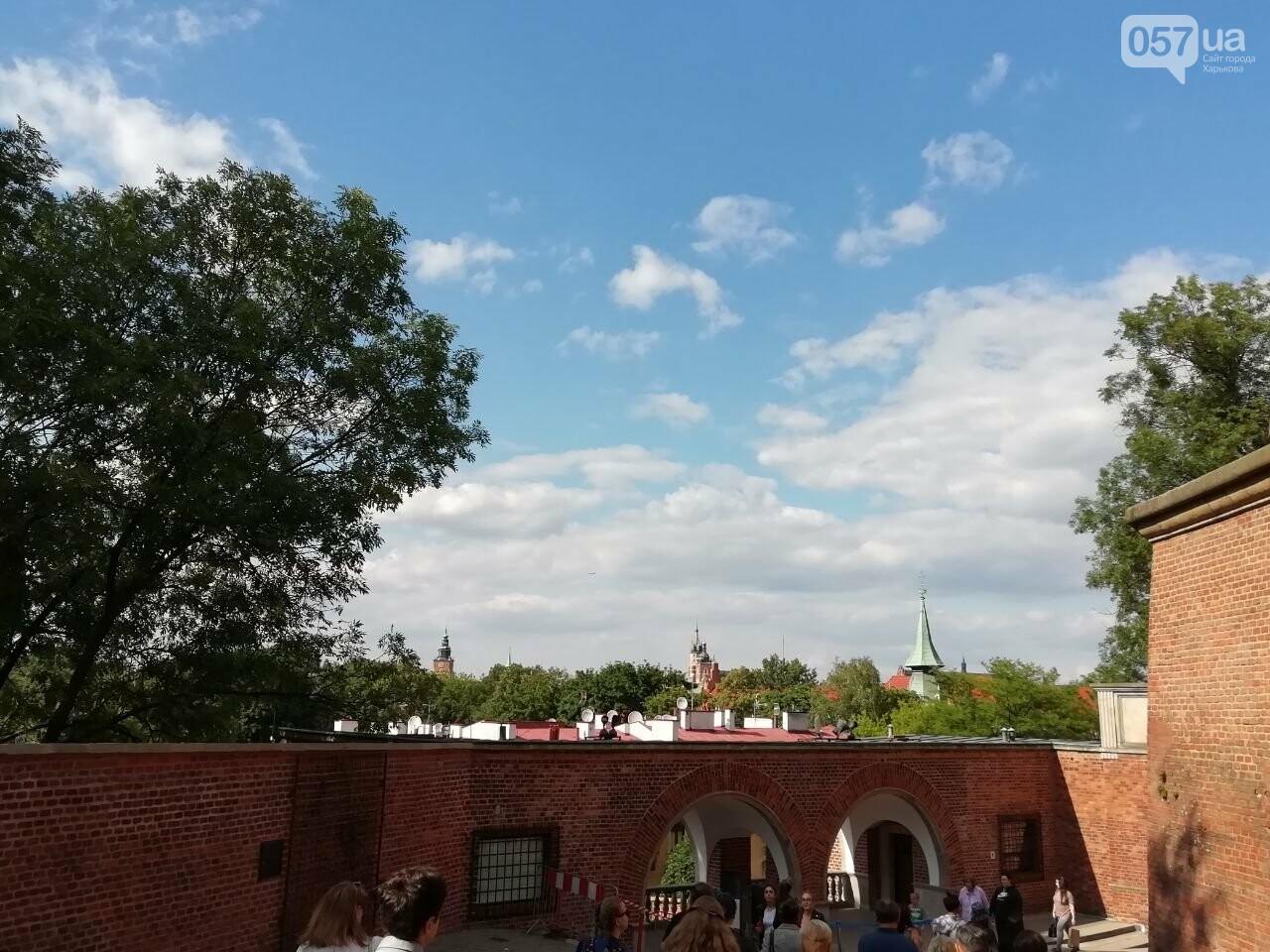 Из Харькова в Краков: Королевский замок, средневековые здания и музей под землей, - ФОТО, фото-27